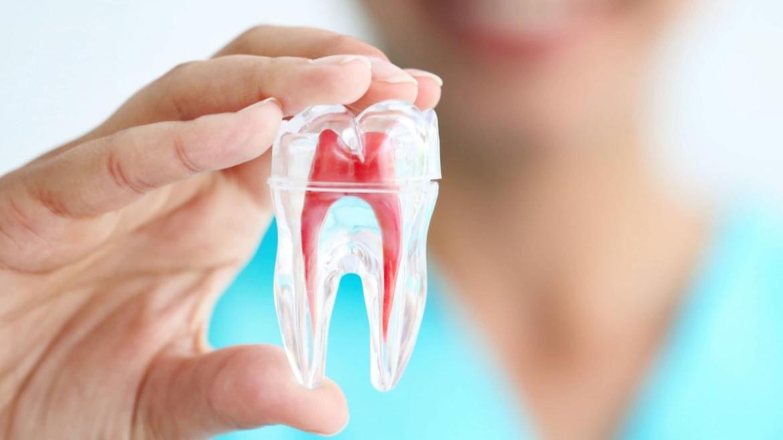 Protesi ed endodonzia
